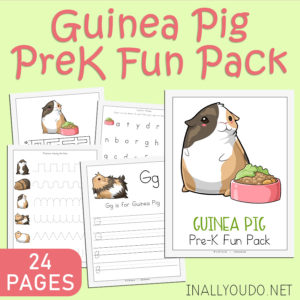 The Guinea Pig Themed Pre-K Fun Pack includes 24 pages of activities to help improve handwriting, fine motor skills, counting, matching and much more! You'll find hands-on activities, such as puzzles and a roll-a-graph worksheet. The best part? You can laminate almost every since page in this pack and used them over and over! #prek #preschool #homeschoolers #homeschooling #iaydhomeschoolers
