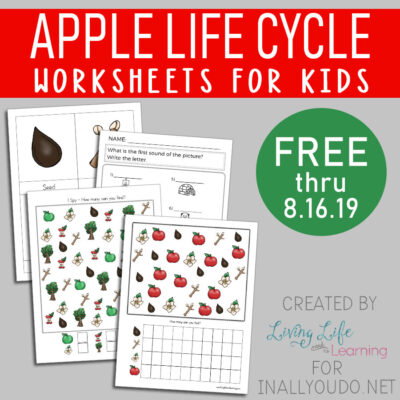 The Life Cycle of an Apple Tree Workbook