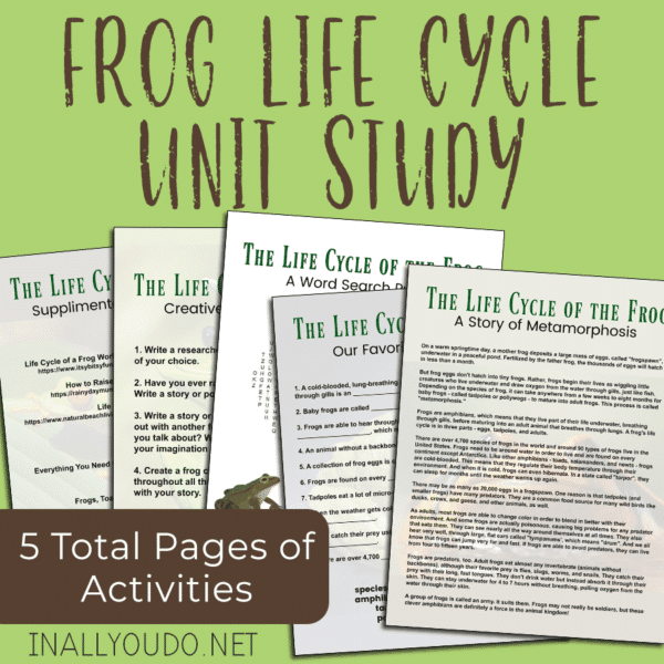 sample pages of frog life cycle unit study